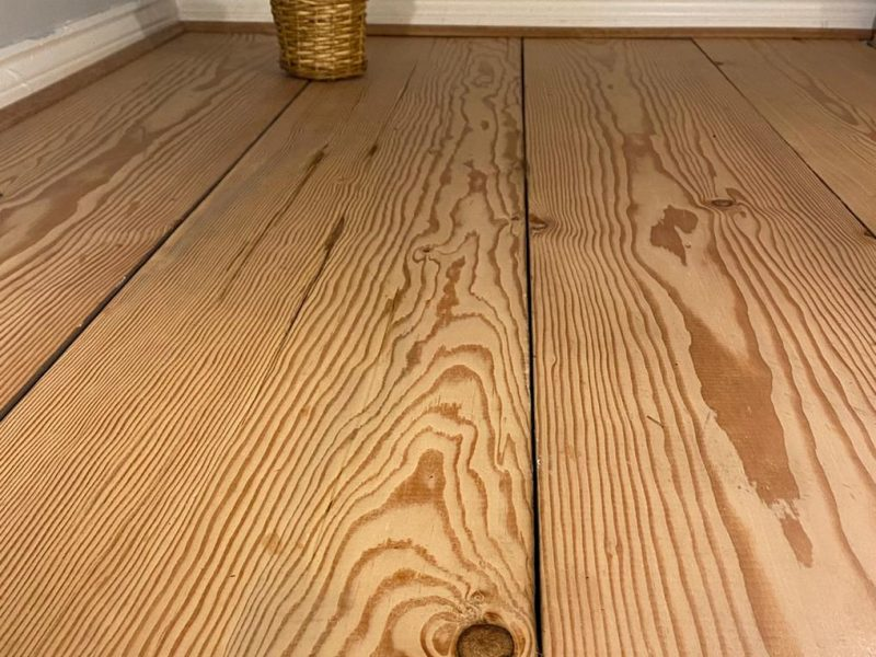 pitch pine flooring with plant
